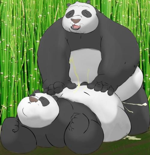 tigress panda kung feet fu Street fighter chun li and cammy