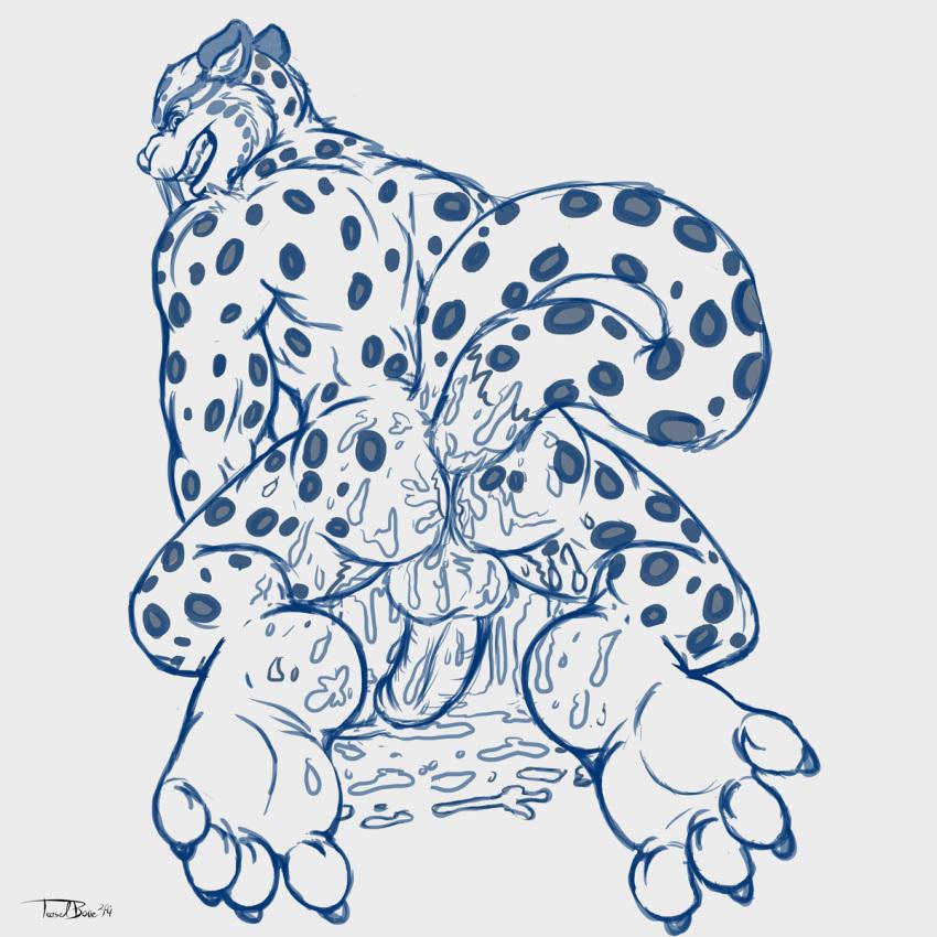 panda kung feet fu tigress Baka na imouto o rikou ni suru no wa ore no xx dake na ken ni tsuite episode 2
